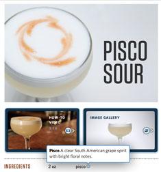 Speakeasy Cocktails for iPad: pisco sour