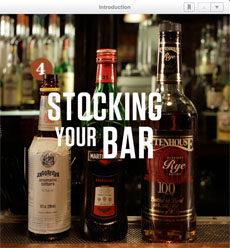 Speakeasy Cocktails for the iPad: bar stocking