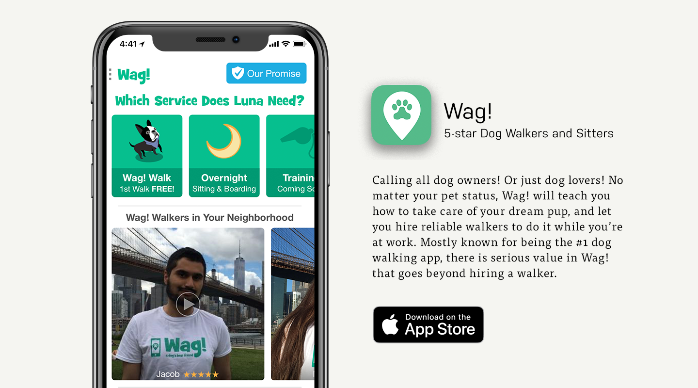 Wag Dog Walking App