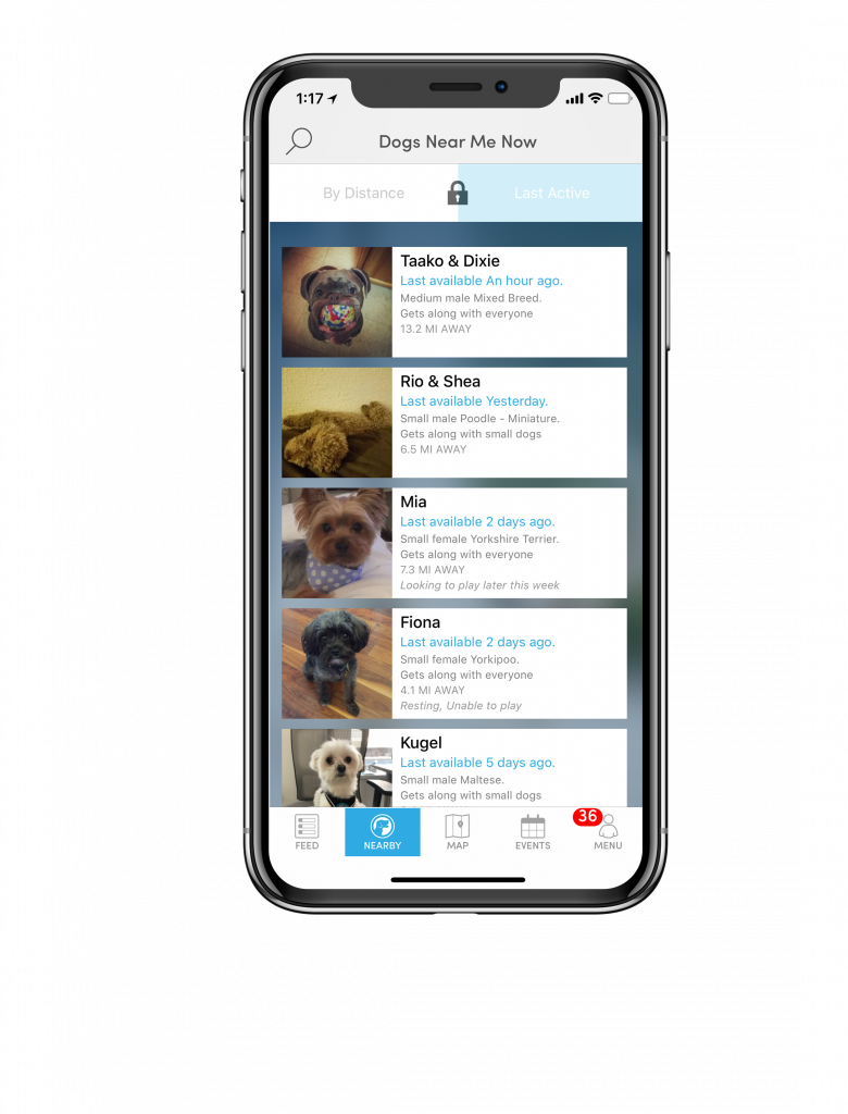 barkhappy one of the best apps for dog lovers