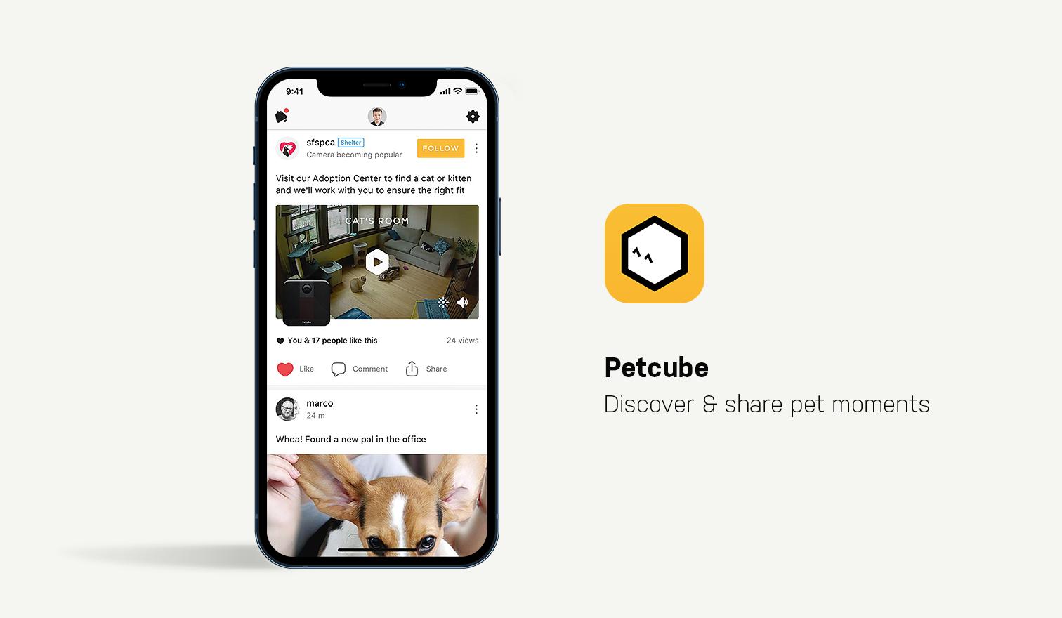 petcub app